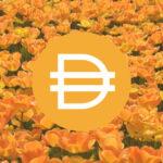 【ステーブルコイン】DAIとは 次世代をいく安定型コイン!