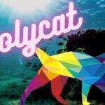 Polycatファイナンス|ネコで魚をふやす「DeFi」